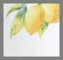White Lemons