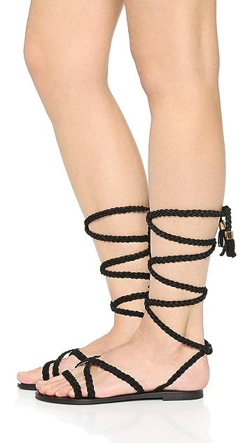 9ba1dcb6ed18 ... Raye Sadie Gladiator Sandals ...