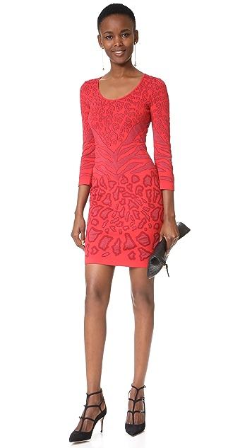 Roberto Cavalli Leopard Mini Dress