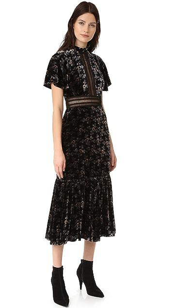 Rebecca Taylor Shadow Floral Velvet Dress