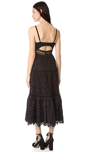 Rebecca Taylor Sleeveless Lace Dress