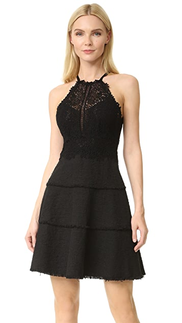 Rebecca Taylor Sleeveless Tweed and Lace Dress