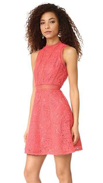 Rebecca Taylor Sleeveless Arella Lace Dress