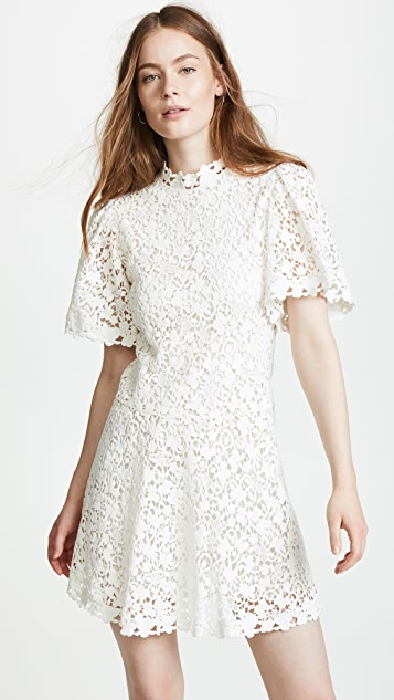 Rebecca taylor floral lace dress shopbop rebecca taylor floral lace dress mightylinksfo