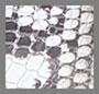 White/Black Multi