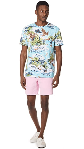 Polo Ralph Lauren Montauk Chino Shorts