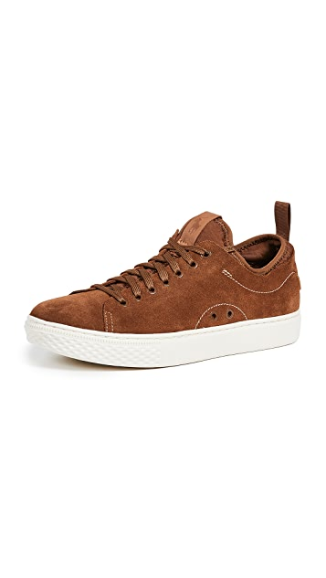 Polo Ralph Lauren Dunovin Low Top Sneakers