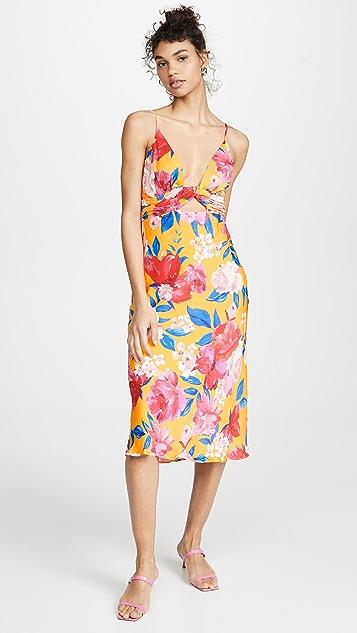 Ronny Kobo Anika Dress