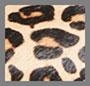 Leopard BRHM
