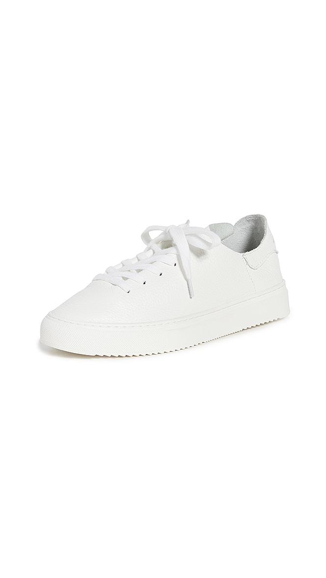 Sam Edelman Poppy Sneakers | SHOPBOP