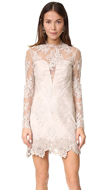 Saylor Leondra Lace Dress