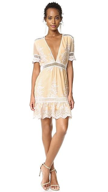 Saylor Alexa Mini Dress