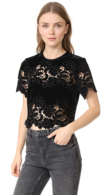 Saylor Eve Embroidery Top