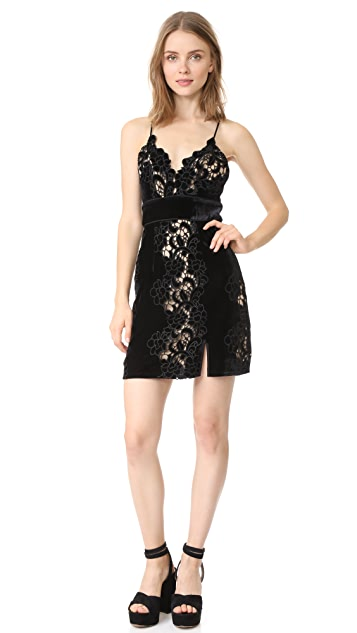 Saylor Logan Embroidery Dress