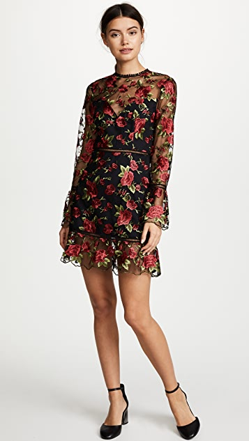 Saylor Allyson Dress