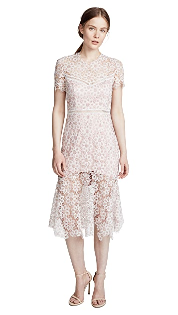 Lillie Dress in Blush. - size M (also in S,XS) Saylor
