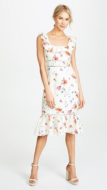 Saylor Missy Dress