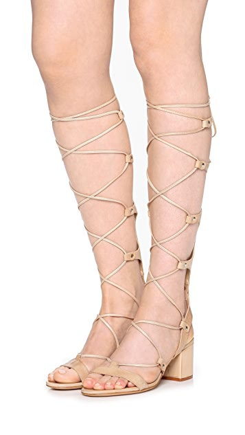 Schutz Hope Tall Gladiator City Sandals