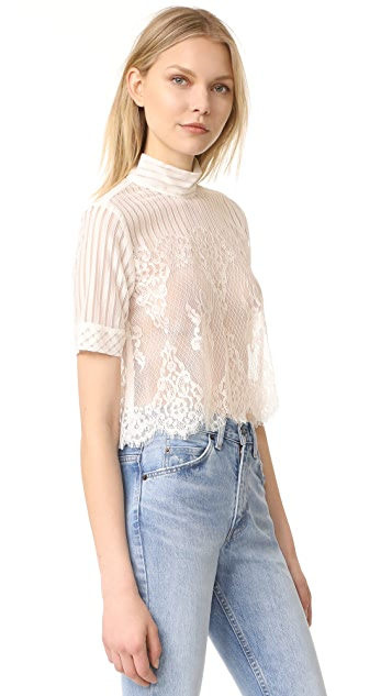 Stone Cold Fox Rossa Crop Top