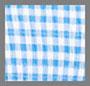 Blue Gingham/White