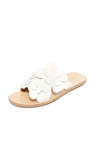 see by chloe floral slides shopbop