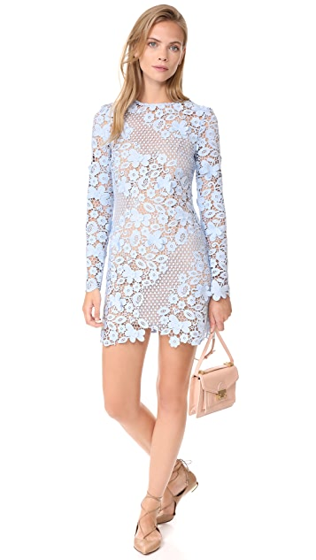 Self Portrait 3D Floral Mini Dress