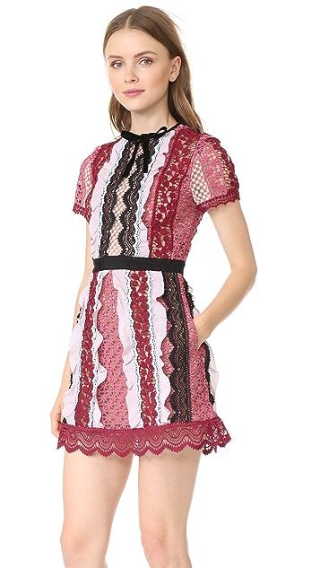 Self Portrait Panelled Bellis Lace Trim Mini Dress