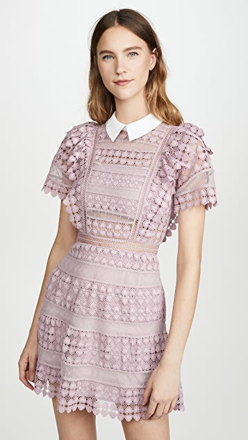Self Portrait Heart Lace Mini Dress