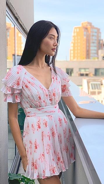 Self Portrait Floral Print Chiffon Mini Dress