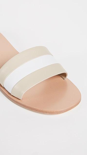 SENSO Bec Slides