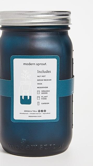 Shopbop @Home Basil Garden Jar