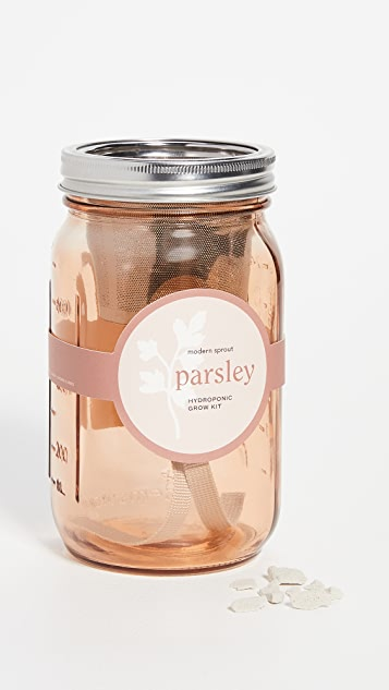 Shopbop @Home Parsley Garden Jar