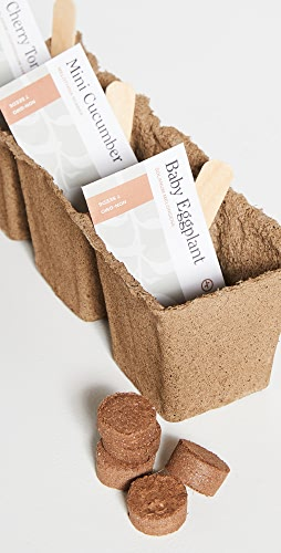 Shopbop @Home - Mighty Minis Seed Starter Trio Kit
