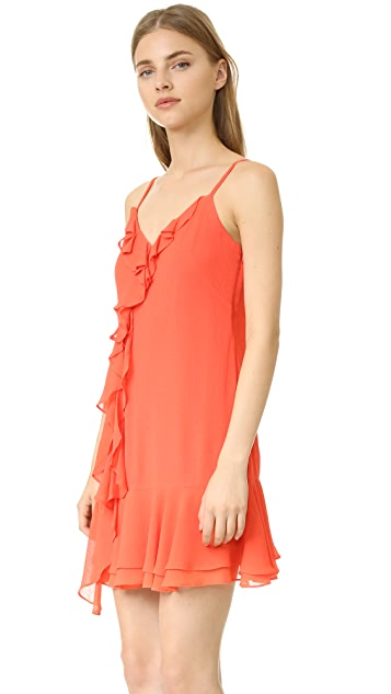 Shoshanna Isadora Dress