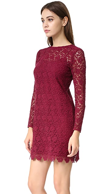 Shoshanna Mena Lace Dress