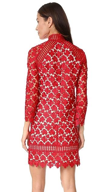 Shoshanna Mock Neck Lace Dress