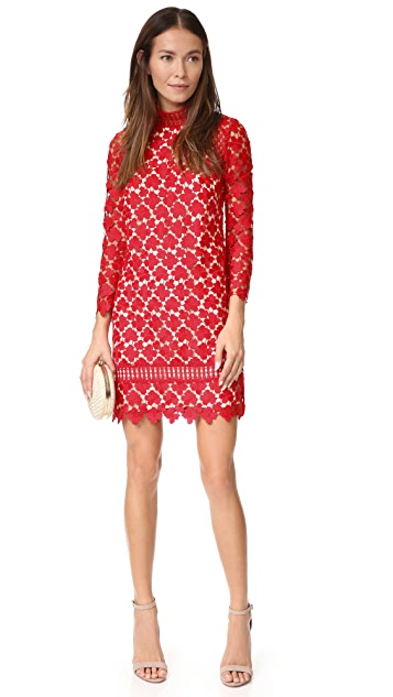 Shoshanna Mock Neck Lace Dress