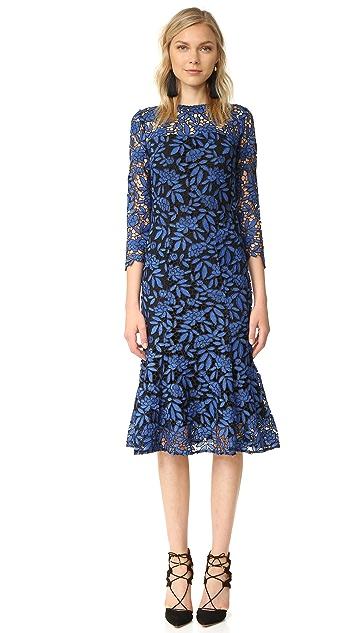 Shoshanna Two Tone Lace Dress