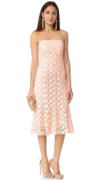 Shoshanna Franklin Midi Dress