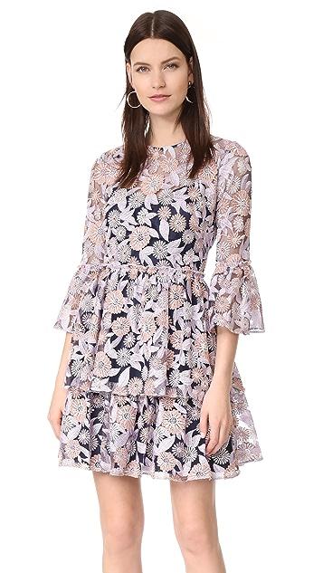 Shoshanna Auburn Dress