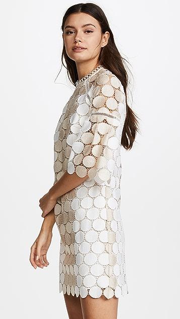 Shoshanna Broome Dress
