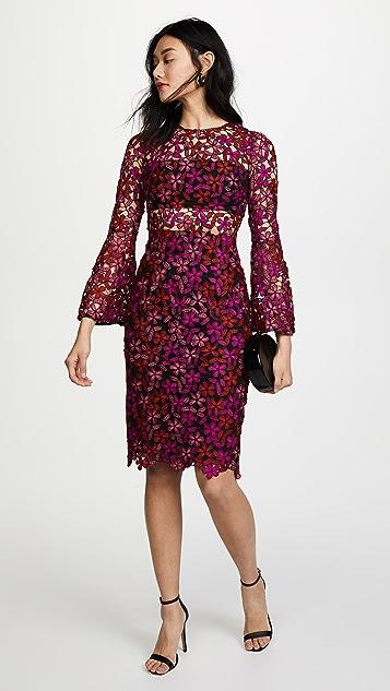 Model Dress
