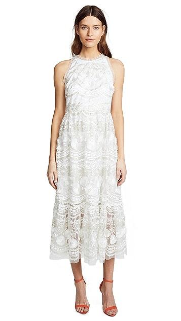 Shoshanna Rosita Dress