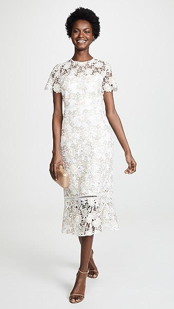 Shoshanna Loren Dress