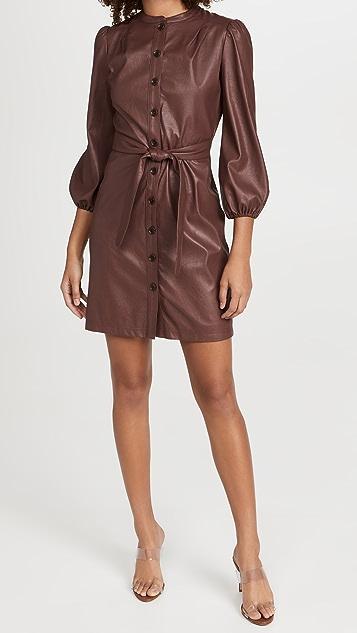 Shoshanna Tallen Dress