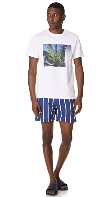 Solid & Striped The Classic Slate Bondi Stripe Trunks