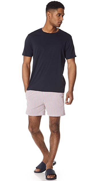 Solid & Striped The Classic Navy Santorini Stripe Trunks