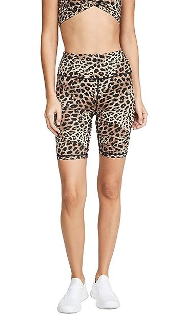 Spiritual Gangster Cheetah Gangster Biker shorts
