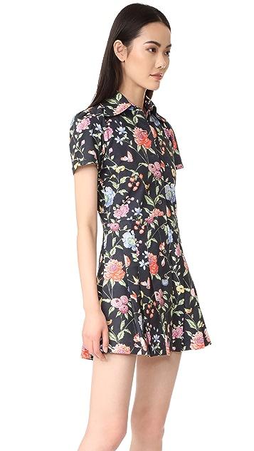 Samantha Pleet Potion Dress