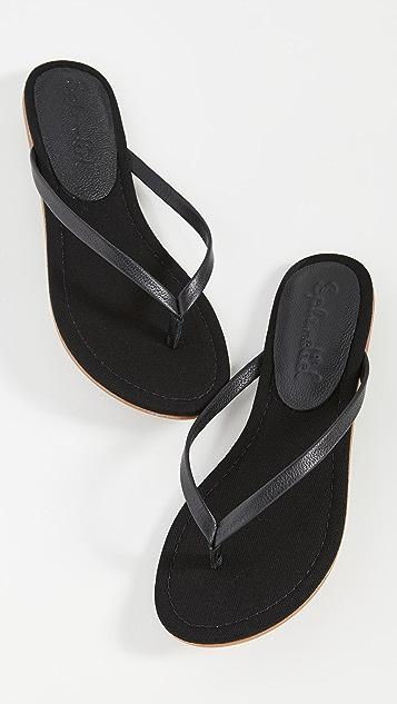 Splendid Ashlee 夹趾凉鞋